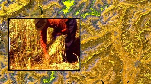 videostill from ALMA by INLAND