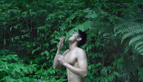 Bo Zheng, Pteridophilia 1, 2016, 17'